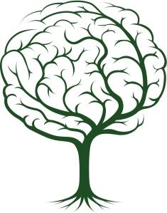 Hjernetre (photos.com)