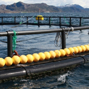 Norsk anlegg for lakseoppdrett