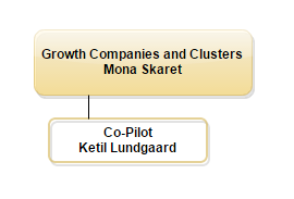 Growth Companies and Clusters