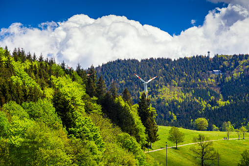 Beautiful summer mountain forest landscape with wind mills